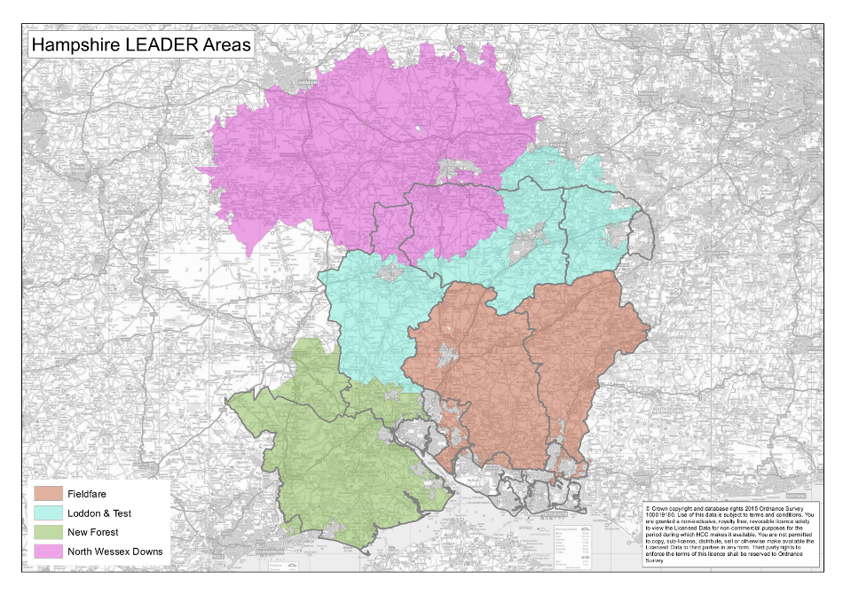 LAG areas in Hampshire